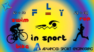 <h2>Fly in Sport</h2>