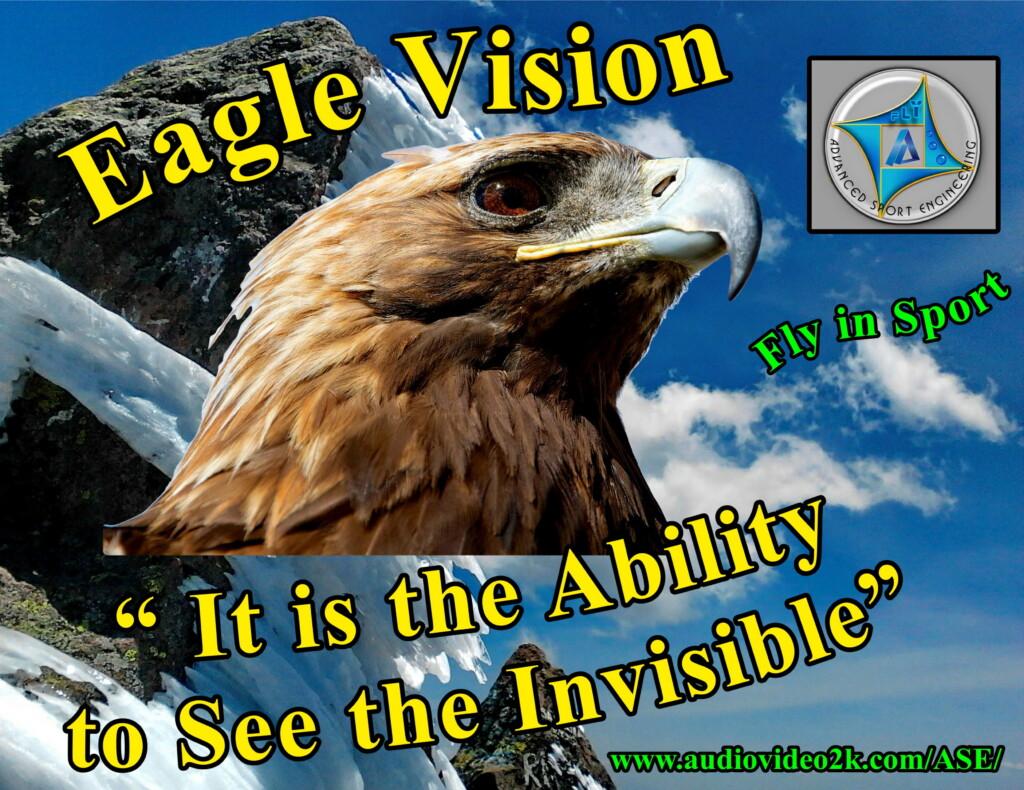 <h2>Eagle Vision</h2>